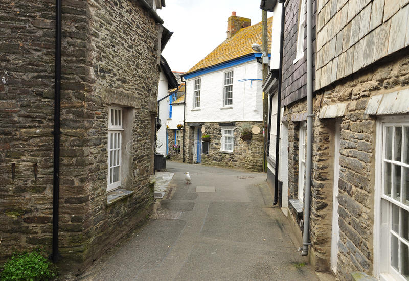 Port Isaac village, Cornwall, England, UK. Port Isaac: typical Cornish village lane, North Cornwall, England, Britain royalty free stock image