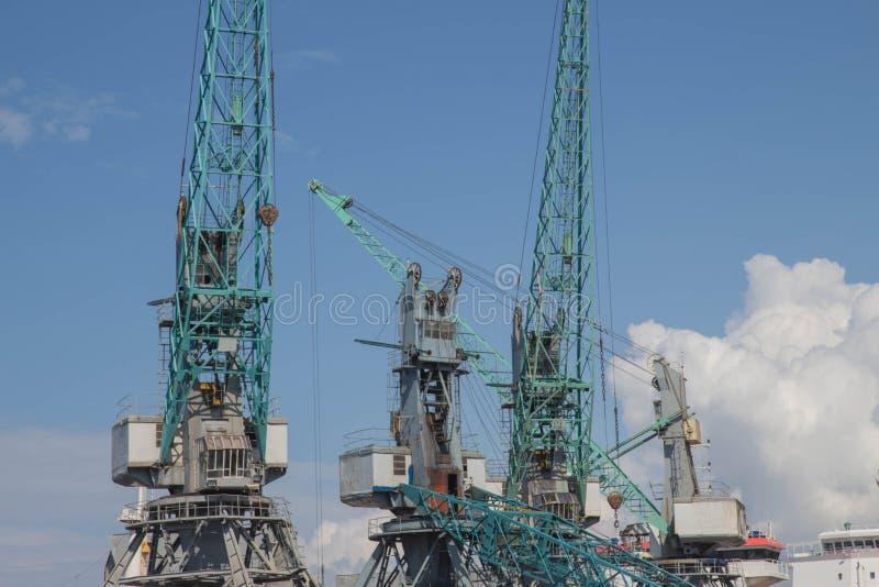 Port maritime de grue de cargaison, grues dans le terminal marin photos stock