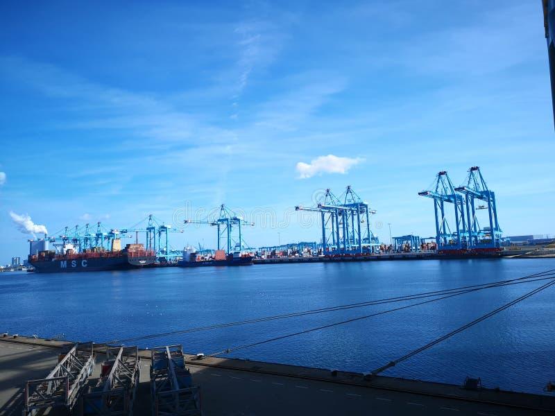 port rotterdam royaltyfri bild