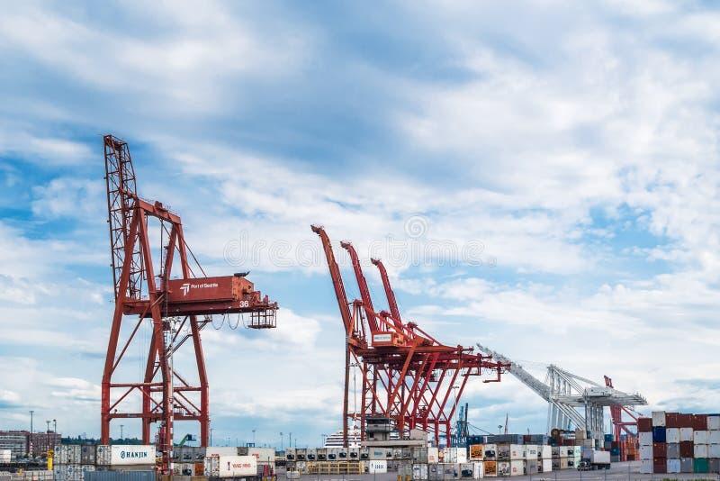 Port Seattle żurawie obrazy royalty free