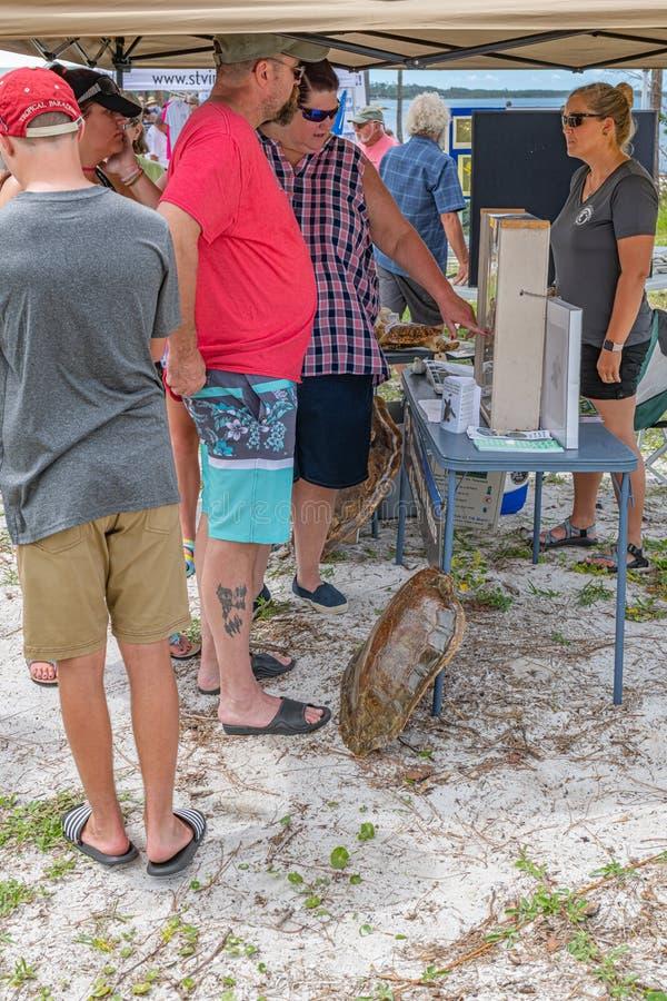 Forgotten Coast Sea Turtle Festival stock photo