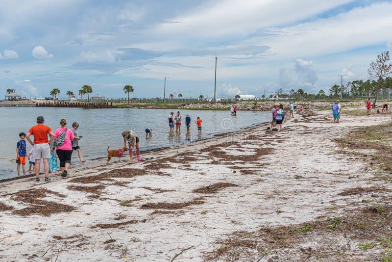Forgotten Coast Sea Turtle Festival stock images