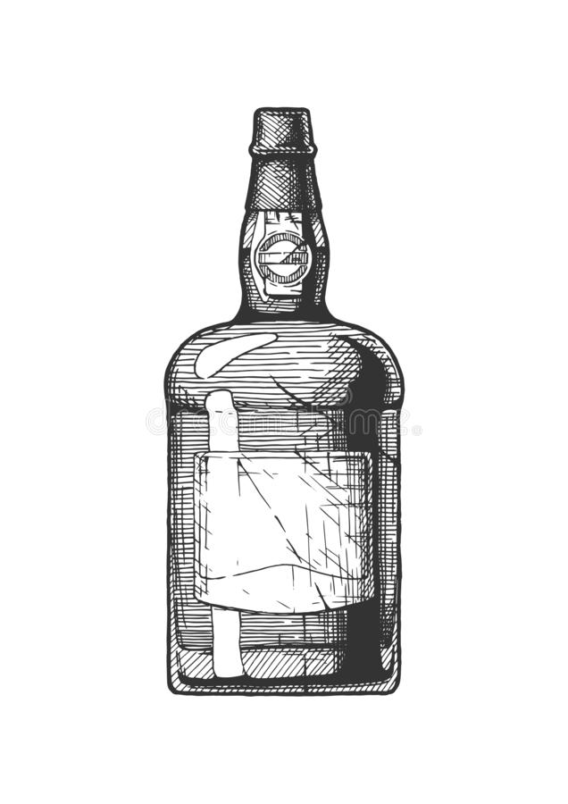 Port wine bottle. Vector hand drawn illustration of port wine bottle, type of Portuguese dessert wine in vintage engraved style. Isolated on white background royalty free illustration