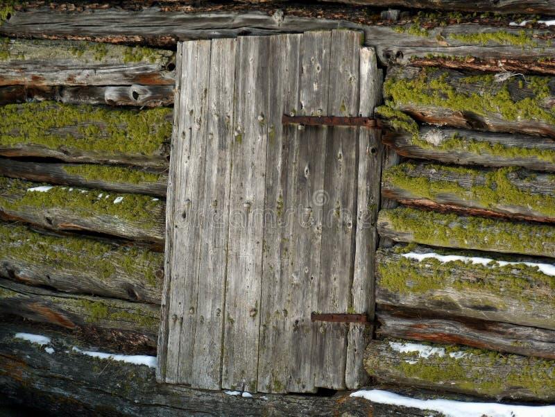 A porta chiusa con muschio immagine stock libera da diritti