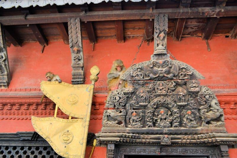 Porta com macacos, Kathmandu do templo, Nepal foto de stock