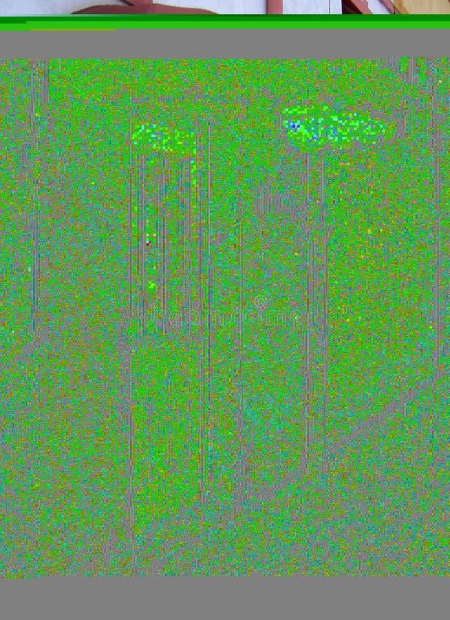 Porta Cor-de-rosa Fotografia de Stock