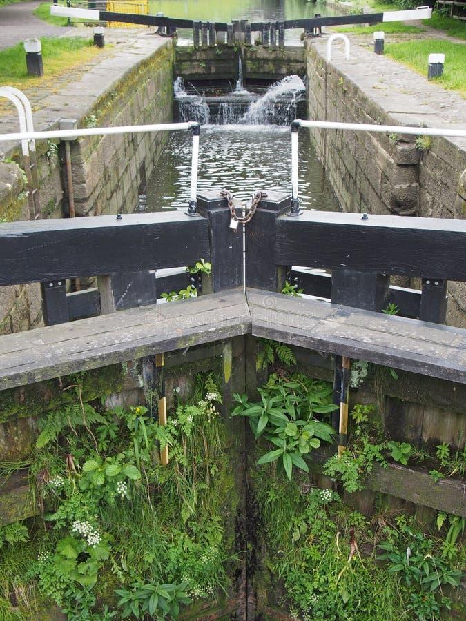 Porta de eclusa de madeira pretas velhas fechados com água de fluxo coberto de vegetação com a vegetação no canal do rochdale no  imagem de stock royalty free
