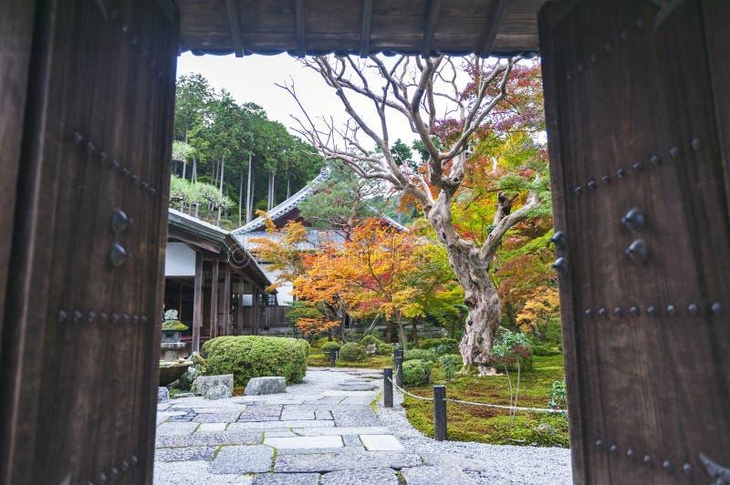 Porta de entrada ao jardim bonito do bordo japonês durante o outono no templo de Enkoji em Kyoto, Japão imagens de stock royalty free