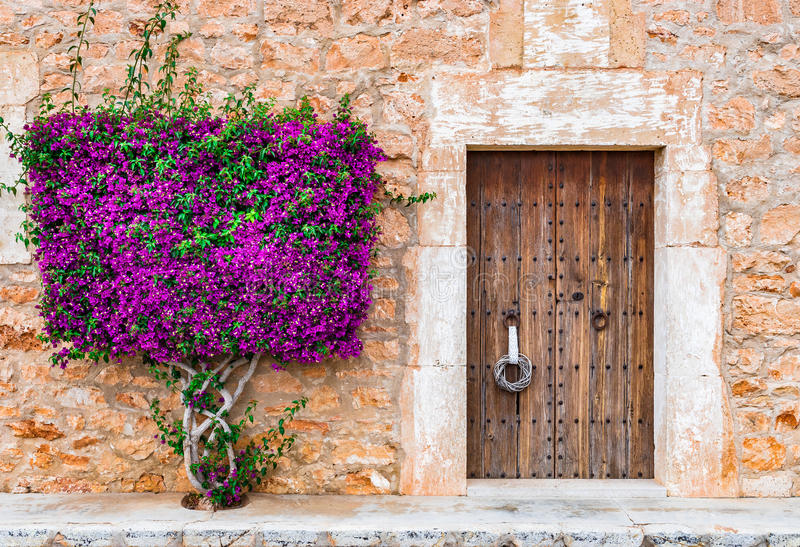 Porta de madeira e buganvília da casa mediterrânea imagem de stock royalty free