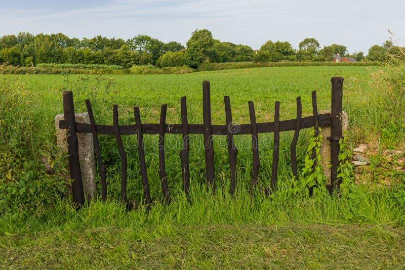 Porta de madeira em um campo foto de stock