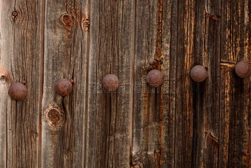 Porta de madeira oxidada imagem de stock