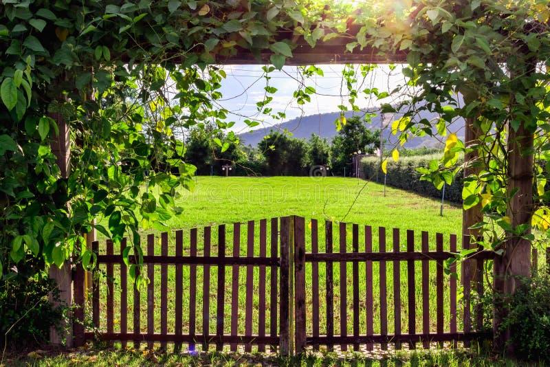 A porta de madeira fotografia de stock