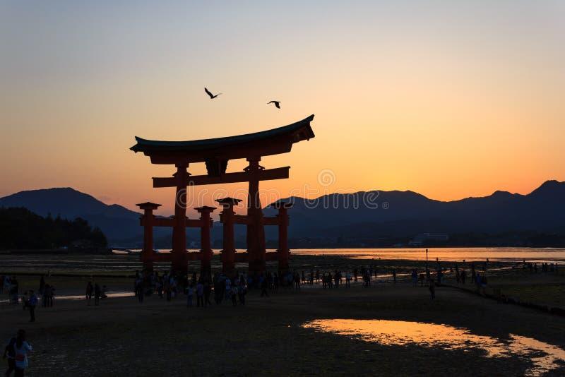 Porta de Torii do santuário de Itsukushima na hora dourada fotografia de stock