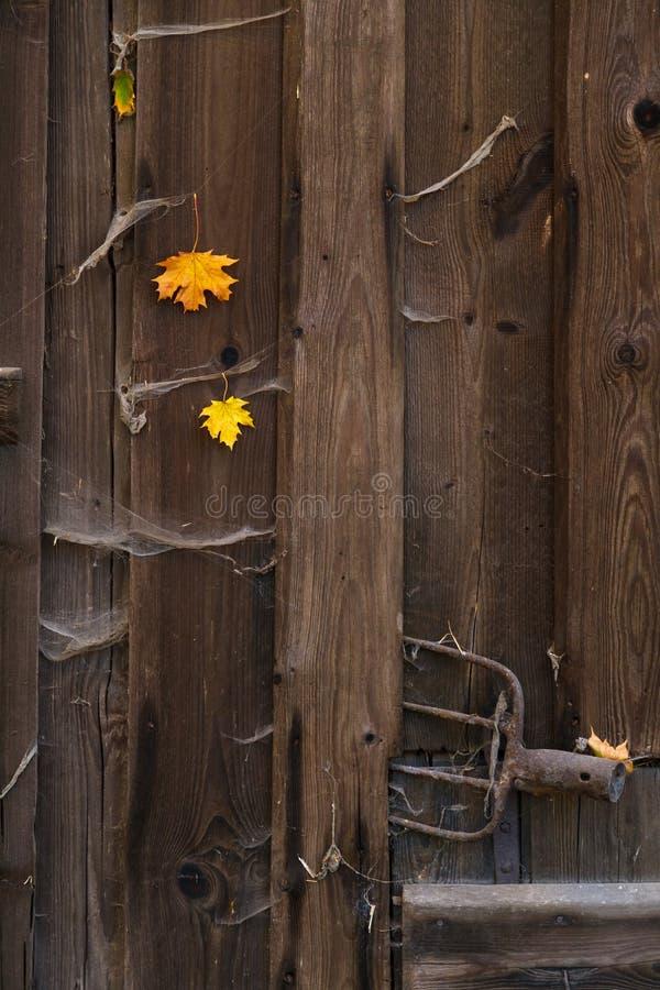 Porta di legno del vecchio granaio immagine stock