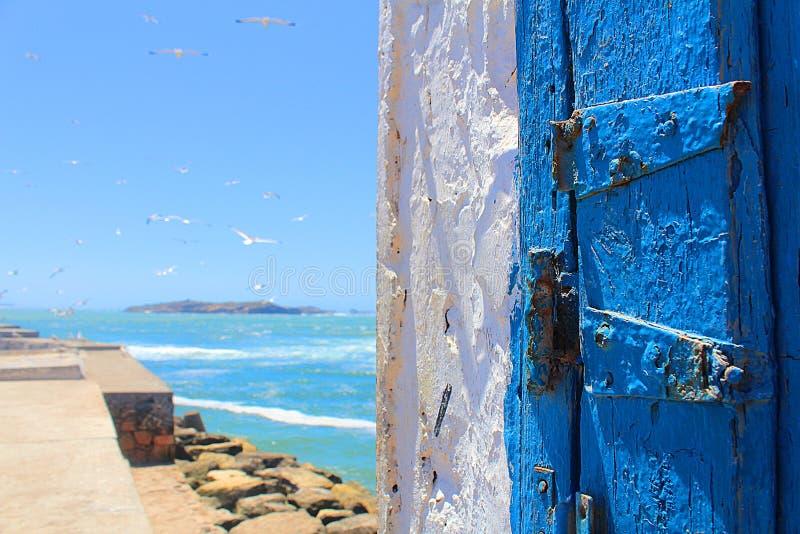 Porta e gabbiano blu dal magador nel Marocco immagine stock