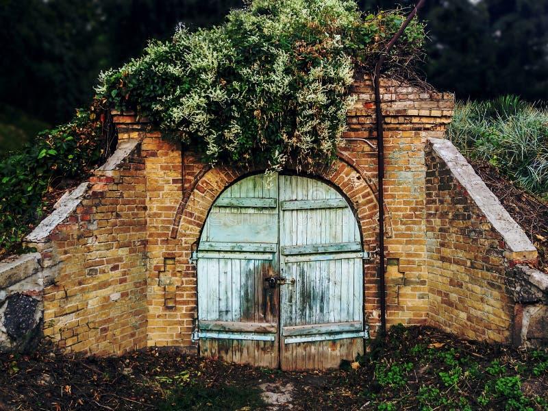 Porta gasto fechado da adega velha na floresta abandonada imagens de stock royalty free