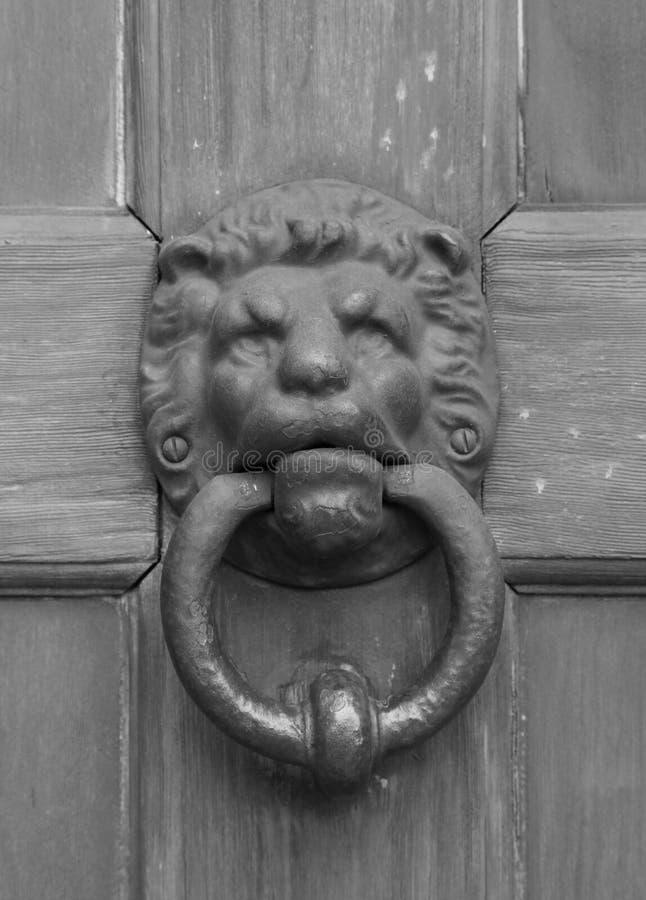 Porta orientale d'annata del battitore del leone del metallo immagine stock