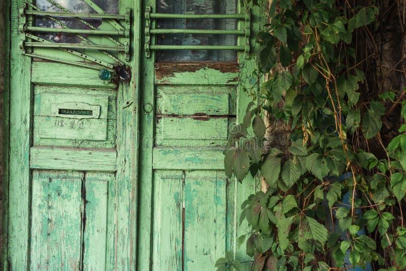 Porta verde de madeira com um fechamento Em torno são muitas hortaliças Outono adiantado imagem de stock royalty free