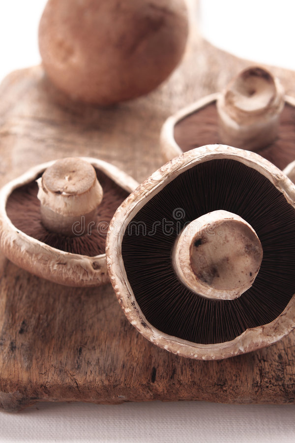 Free Portabello Mushroom Royalty Free Stock Images - 7451639