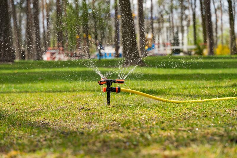 The portable sprinkler sprinkles abundantly water in the summer heat on the lawn on a bright sunny day. The portable sprinkler sprinkles abundantly water in the royalty free stock photos
