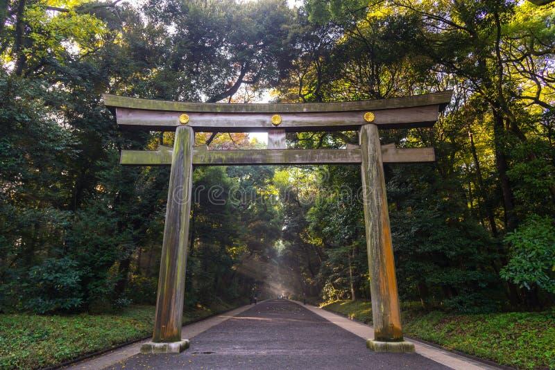 Portal do templo de madeira da porta, Torii de Meiji Jingu Shrine em Centr fotos de stock royalty free