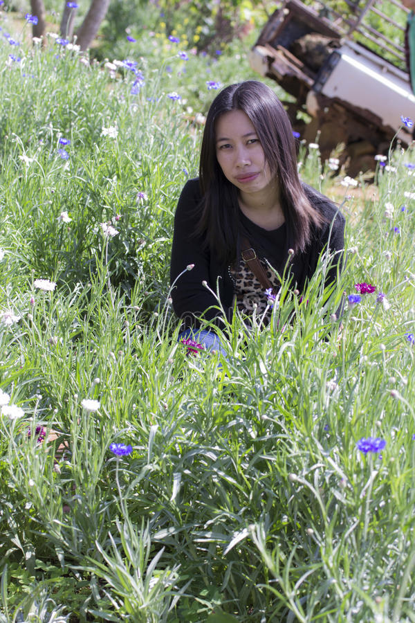 Portarit Thai woman with purple flower garden royalty free stock images