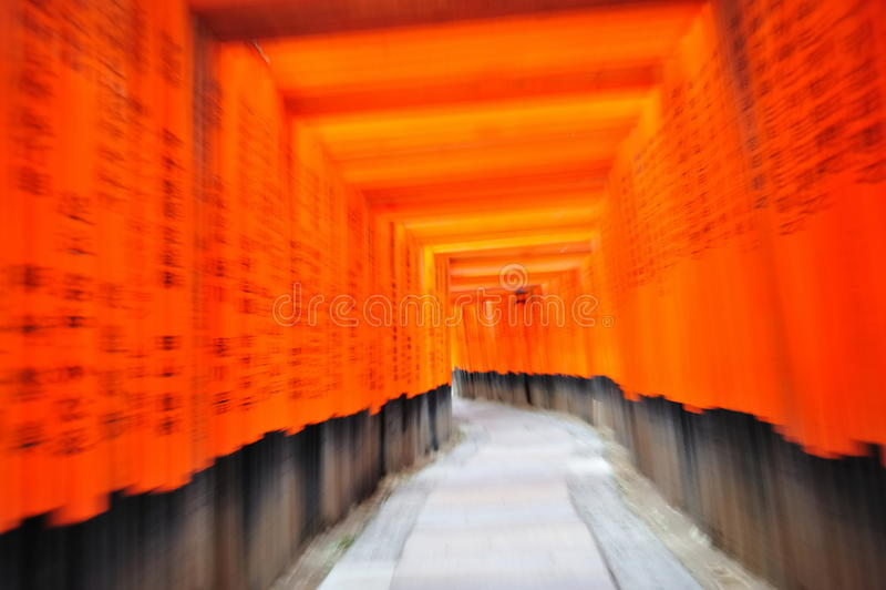 Portas de Torii do santuário de Fushimi Inari Taisha fotos de stock royalty free