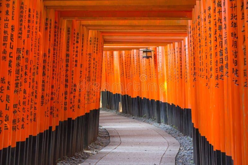 Portas de Torii no santuário de Fushimi Inari Taisha, Kyoto, Japão foto de stock