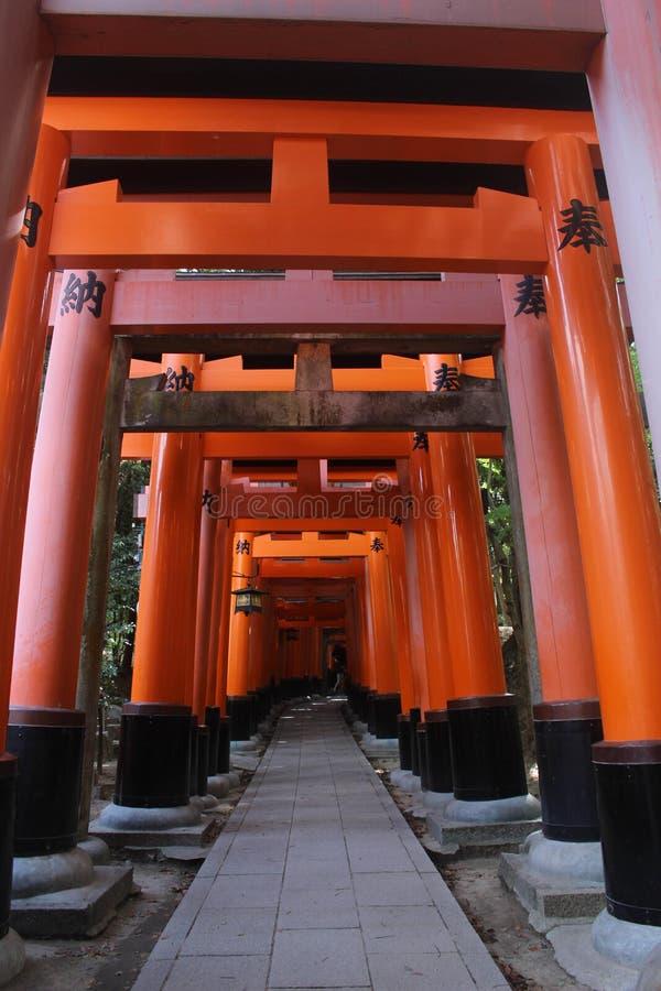 Portas do torii do santuário de Fushimi Inari Taisha em Kyoto, Japão imagem de stock