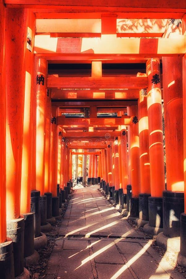 Portas do torii do santu?rio de Fushimi Inari Taisha em Kyoto, Jap?o fotografia de stock royalty free