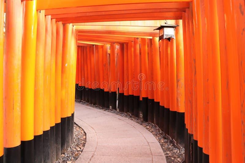 Portas vermelhas de Torii no santu?rio de Fushimi Inari, Kyoto, Jap?o imagens de stock royalty free