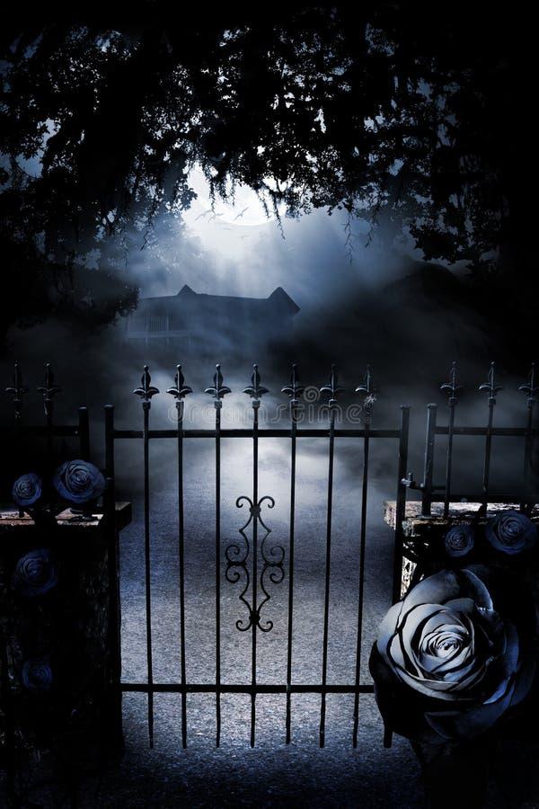 Porte au manoir éclairé par la lune photographie stock