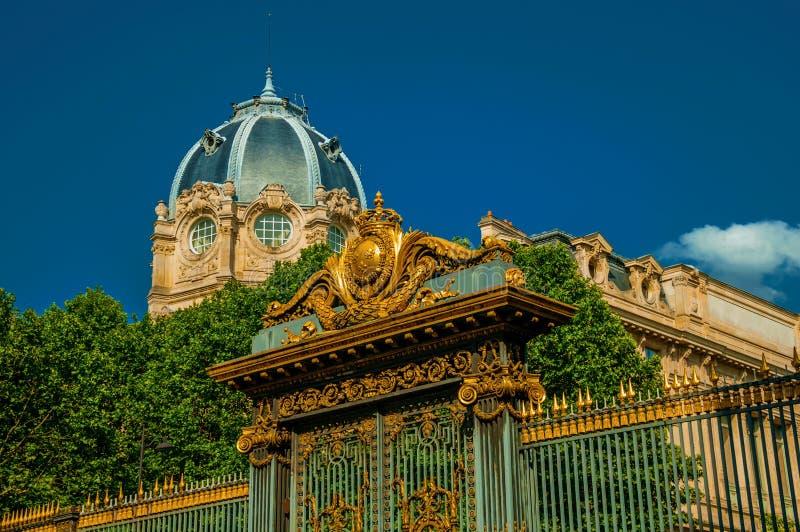 Porte d'or de fer largement décorée et dôme sous le ciel bleu ensoleillé à Paris image libre de droits