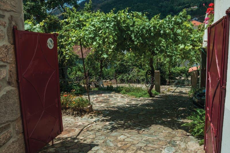 Porte de fer ouverte de cour abandonnée avec les vignes feuillues photos stock