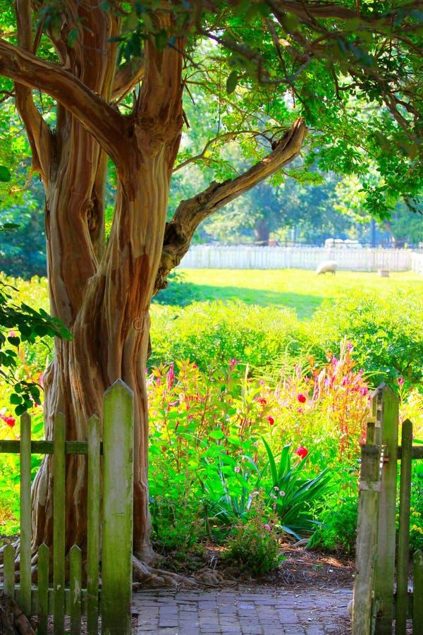 Porte de jardin et jardin d'agrément lumineux et coloré photo libre de droits