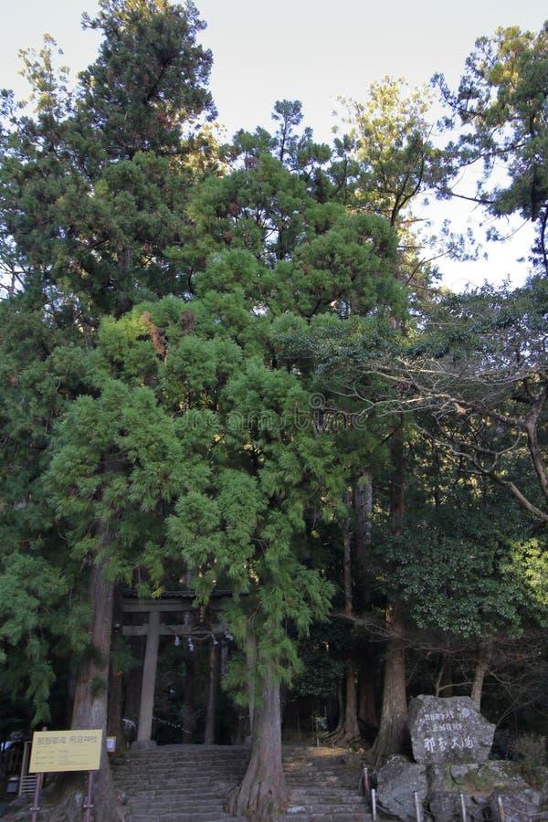 Porte de Torii de tombeau de Hirou image libre de droits