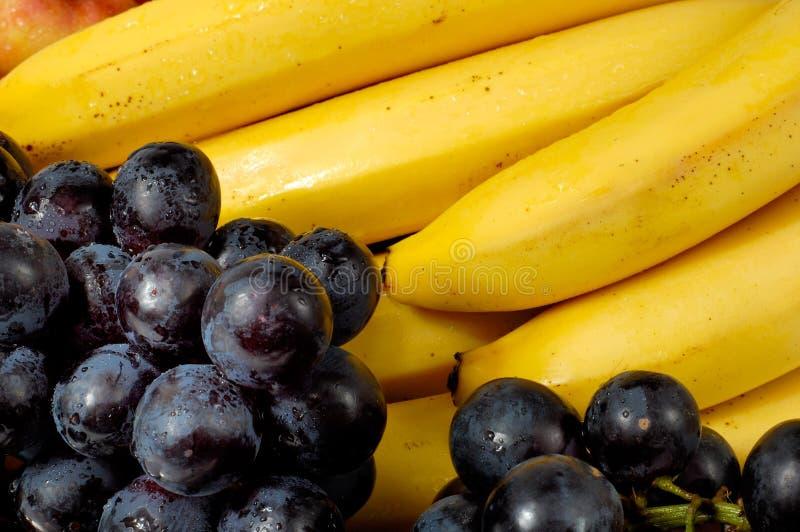 Porte des fruits 2b image stock