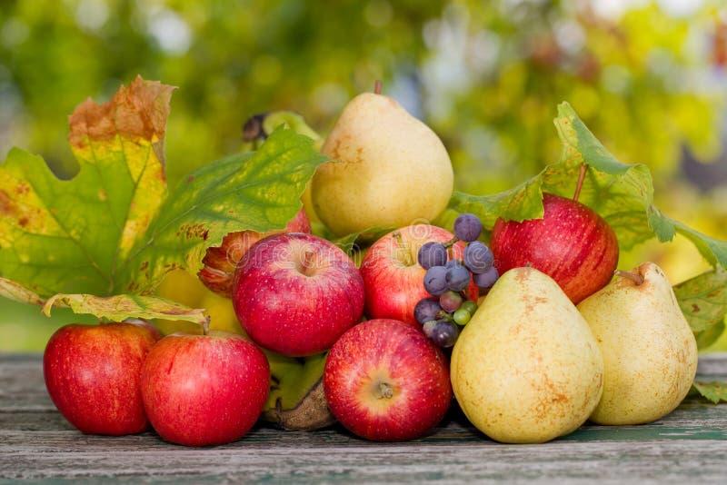 Download Porte des fruits extérieur photo stock. Image du moisson - 87700396