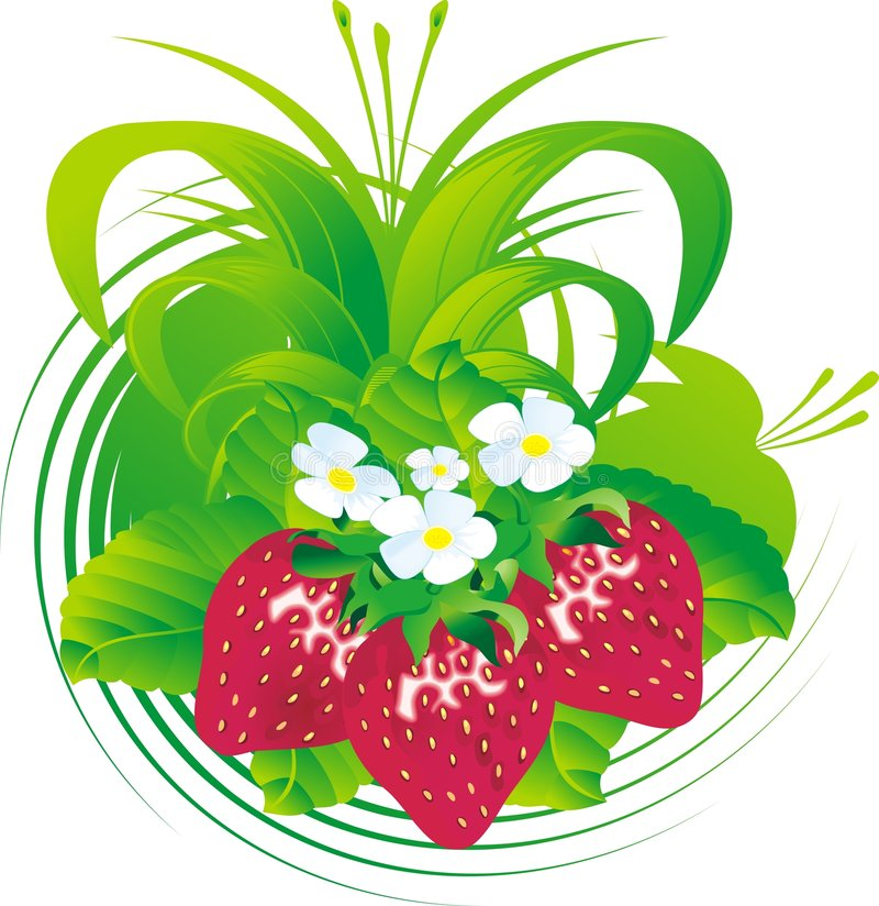 Download Porte des fruits la fraise illustration de vecteur. Illustration du nourriture - 8660475