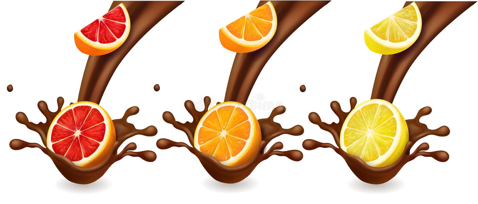 Porte des fruits le cutrus dans l'éclaboussure de chocolat L'orange, citron, vecteur réaliste de pamplemousse a placé illustration stock