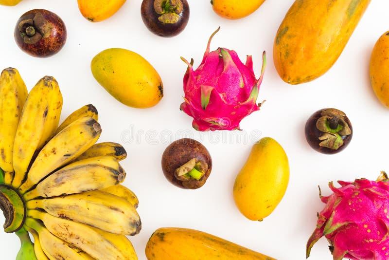 Porte des fruits le modèle de la banane, de la papaye, de la mangue avec le mangoustan et des fruits du dragon sur le fond blanc  photos libres de droits