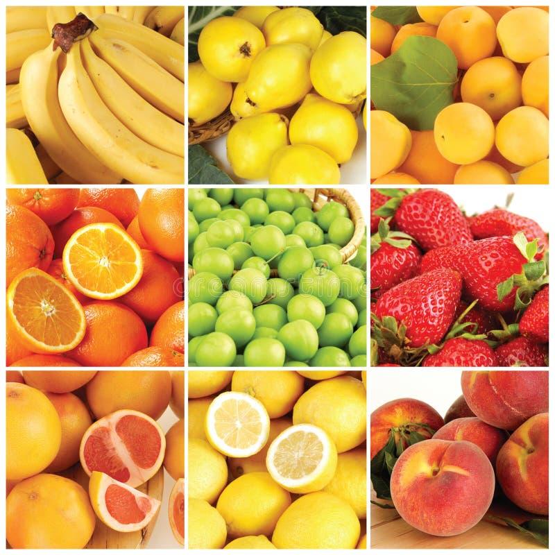 Porte des fruits le ramassage image stock
