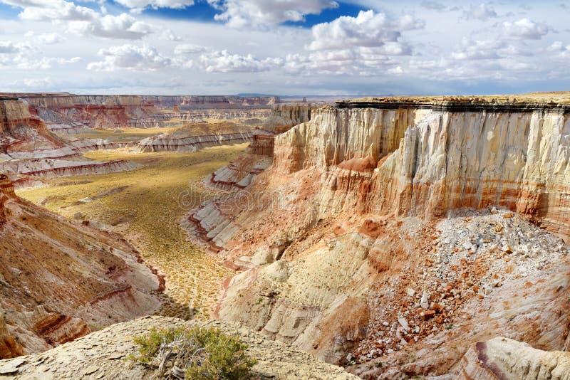 Porte-malheur rayés blancs renversants de grès en canyon de mine de charbon près de ville de tuba, Arizona photo libre de droits