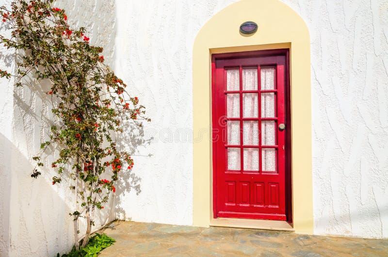 Porte rosse di legno e cespuglio verde con il fiore rosso sopra chiaro bianco fotografia stock libera da diritti