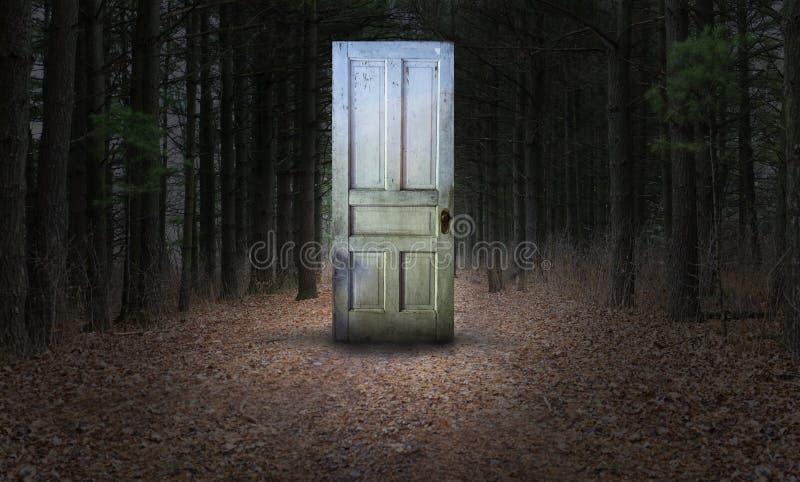 Porte surréaliste, Woords, chemin, forêt image stock