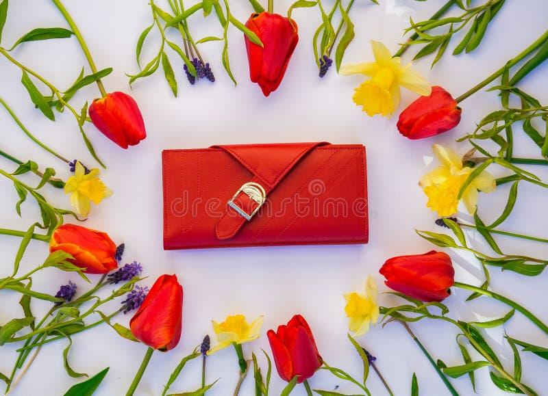 Portefeuille met tulpen op witte achtergrond royalty-vrije stock foto