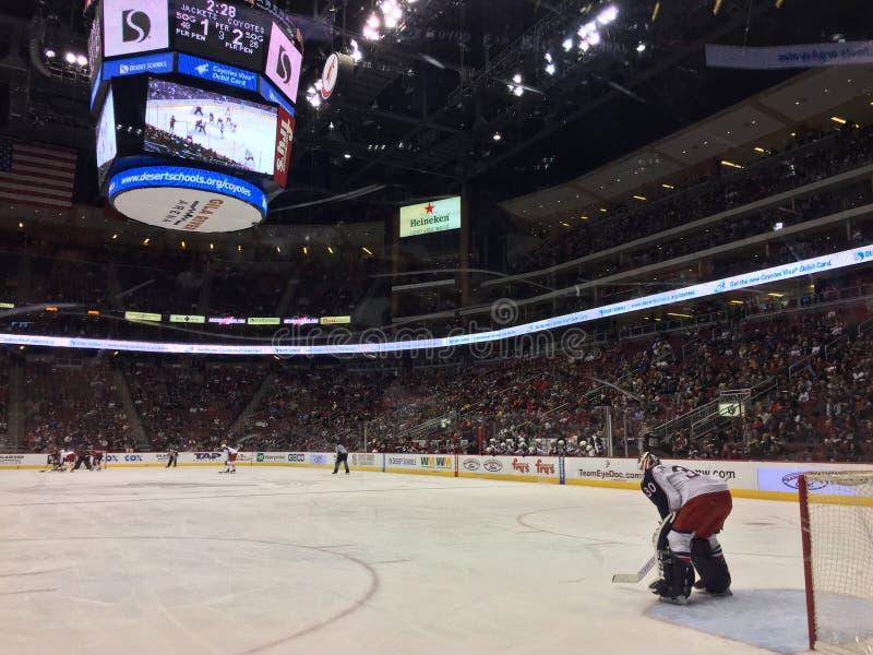 Portero del hockey que se coloca en la red imagen de archivo libre de regalías