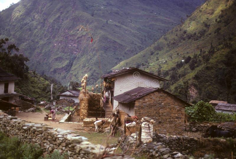 Porteros del senderismo que se reclinan en el ridgetop foto de archivo libre de regalías