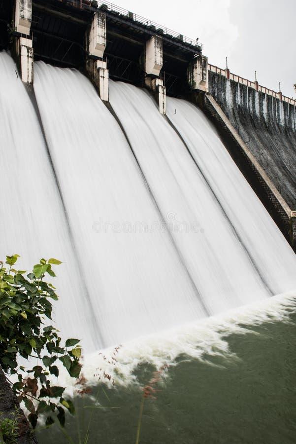 Portes de rondin dans le barrage de Neyyar images stock