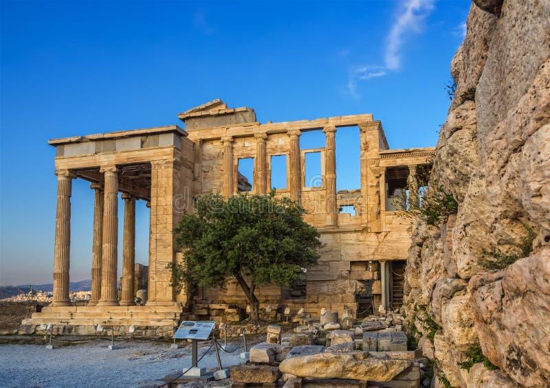 Portiek van Poseidon, een deel van Erechtheion, heilige olijfboom, muren van tempel van Athena Polias op Akropolis, Athene, Griek stock fotografie